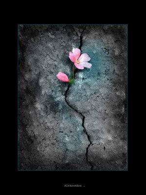 Одиноко как то...Все вокруг совершают или ошибки, или еще что нибудь дурацкое...