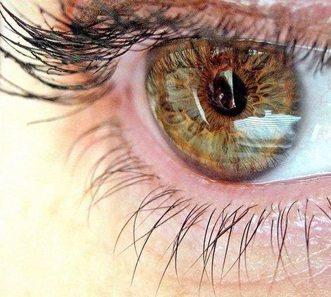 Здоровье приходит через глаза