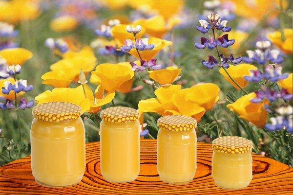 Продам мед собственной пасеки, сбора 2013 г., от 500 кг.  Есть вся необходимая.  Цена: 1500 руб.