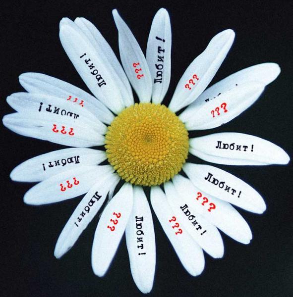 рассмотрим, где что значет цветок без правого липестка приводится книге