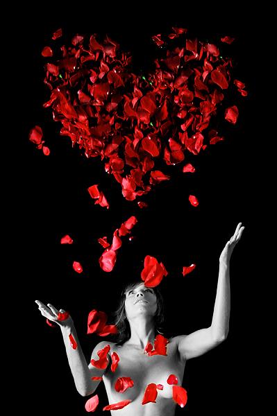 Патио место цветков где мое сердце удается