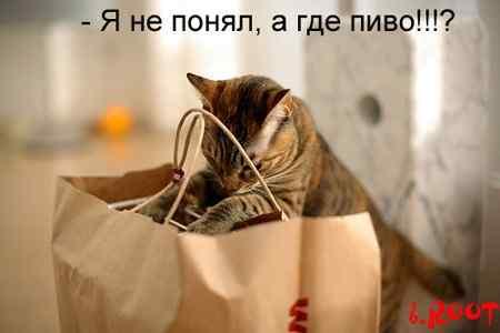 http://i.bigmir.net/img/prikol/images/large/1/2/83721_91125.jpg