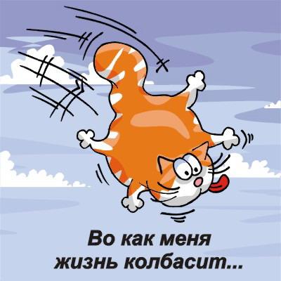 http://i.bigmir.net/img/prikol/images/large/8/3/121938_198412.jpg